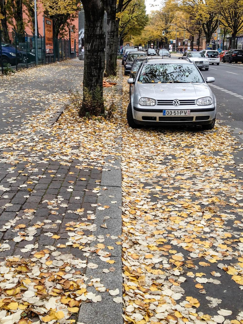 last autumn day: au revoir berlin
