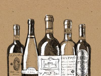 Ars Vinum corporate design, illustration, webdesign, e-commerce