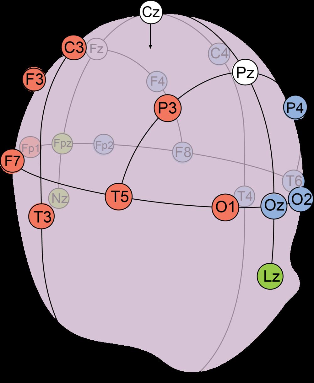 diagrama con colores.png