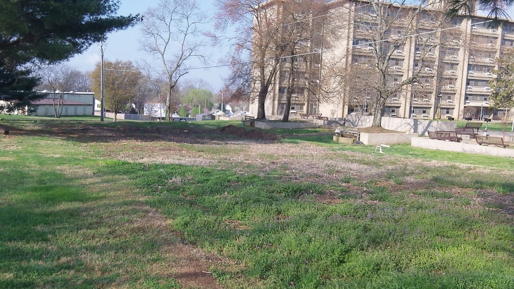 Before   IMAGE DESCRIPTION:  An overgrown grass lot in front of an apartment building.