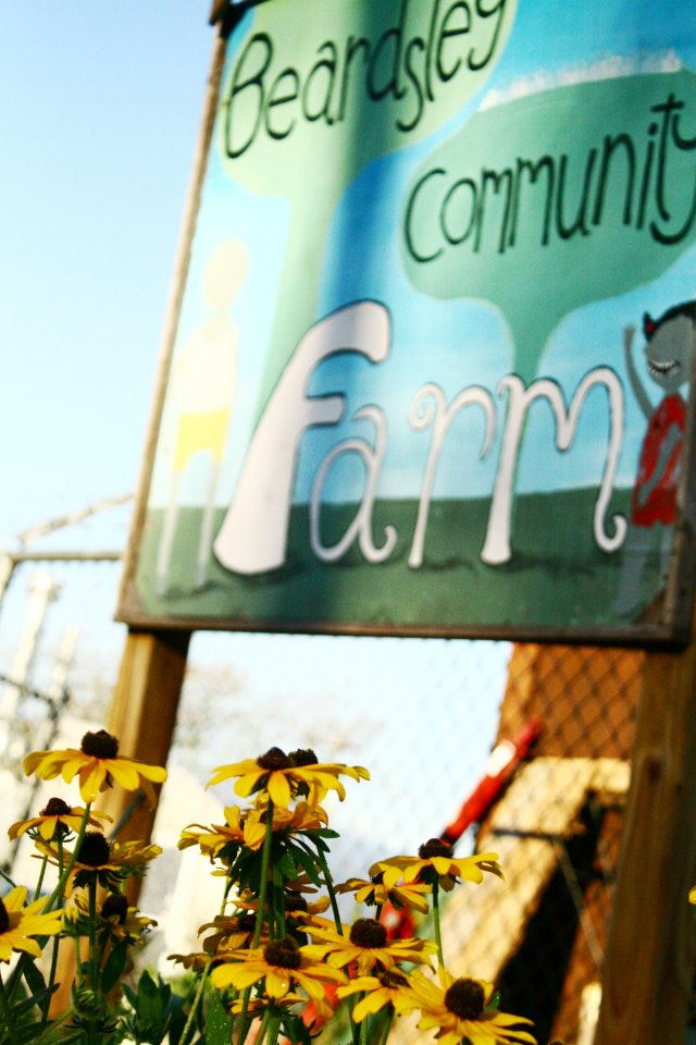 "IMAGE DESCRIPTION:  An obscured sign with a cartoon of a child that says ""BEARDSLEY COMMUNITY FARM."" In front of the sign at the bottom left are some black-eyed susan flowers."