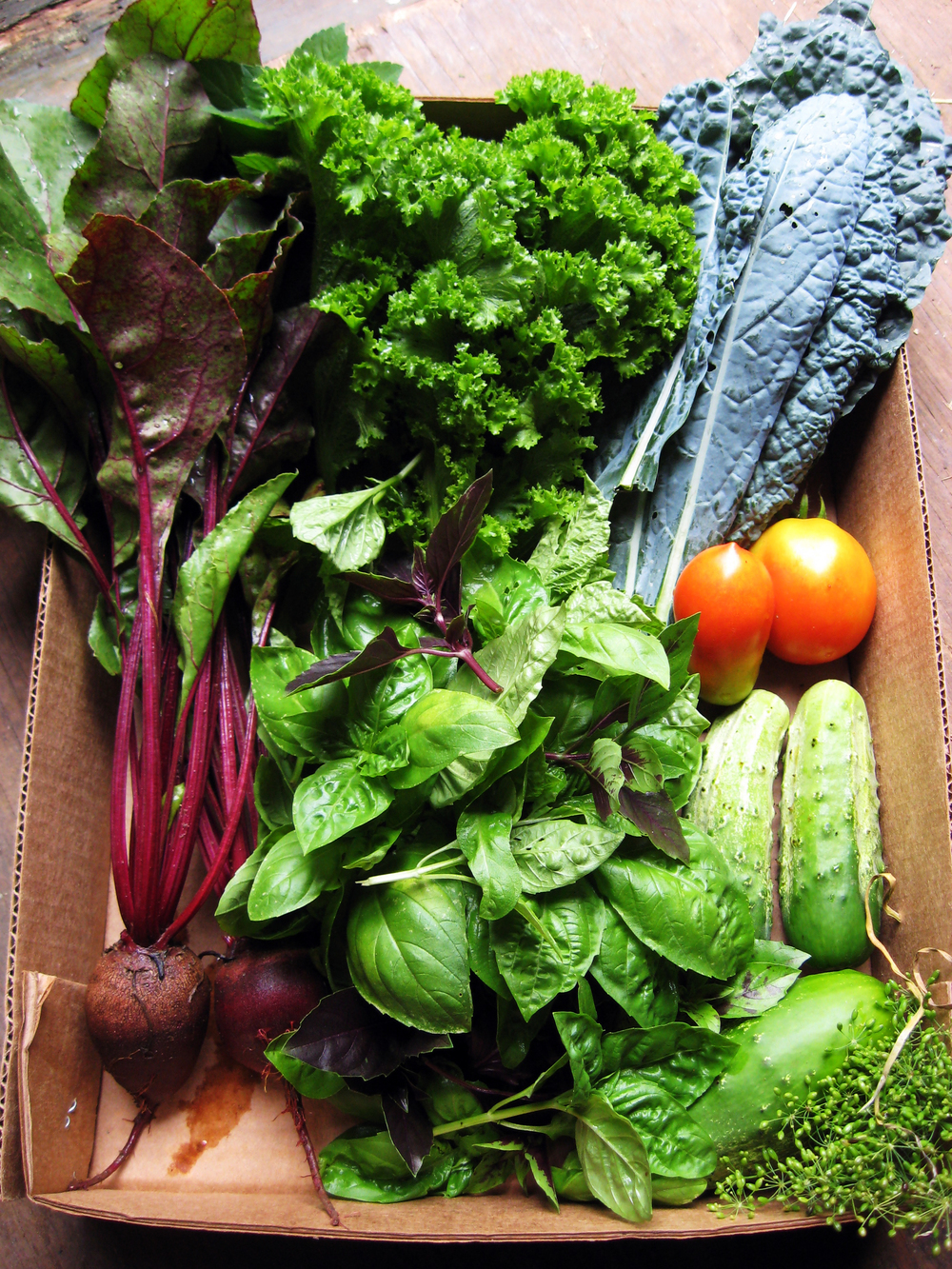 IMAGE DESCRIPTION:  A cardboard box holding various produce. Clockwise from left to bottom right: beets, kale, basil, tomatoes, cucumbers, and fennel seed.