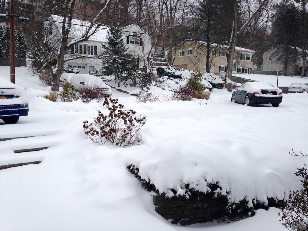 Resika frontyard.jpg