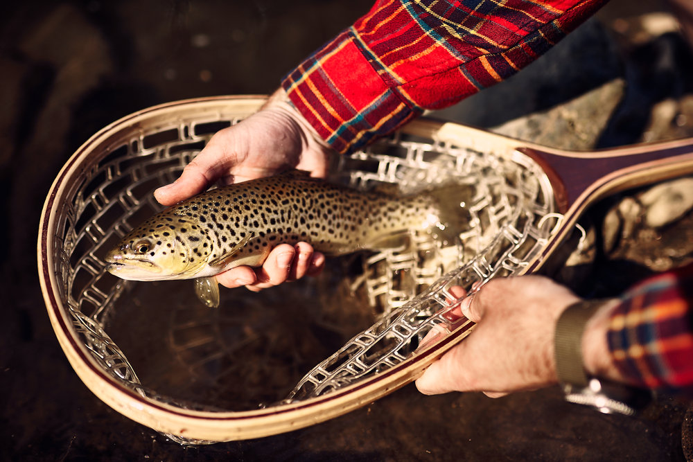 fishboy.jpg