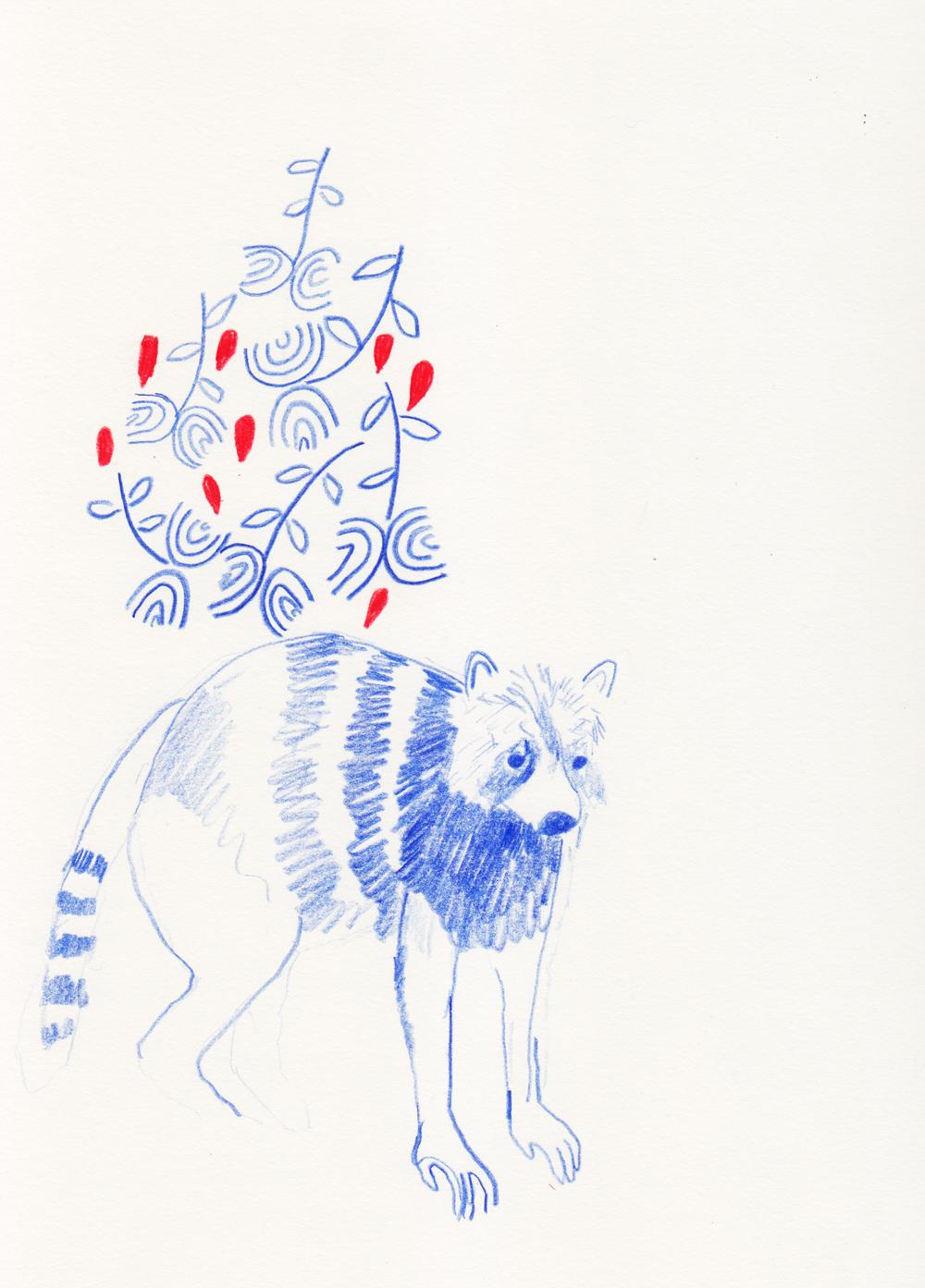raccoon after s. delaunay.jpg