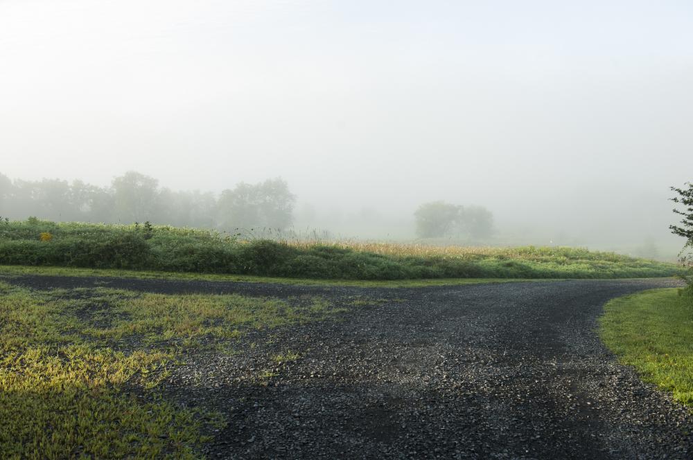 Walking a Path to Nowhere-2.jpg