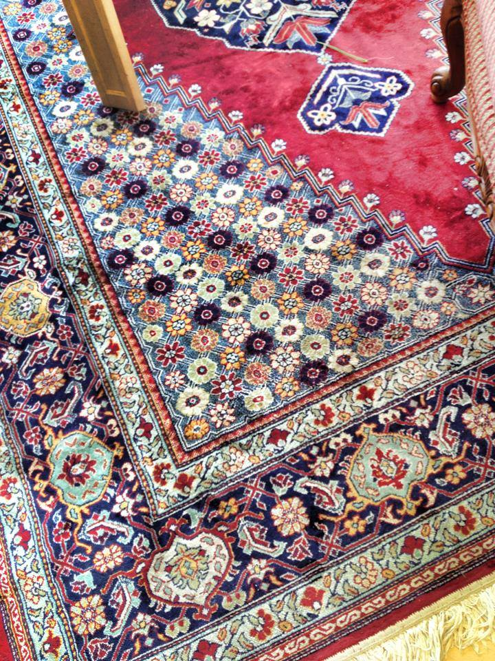 Gorgeous Vibrant Colors Carpet