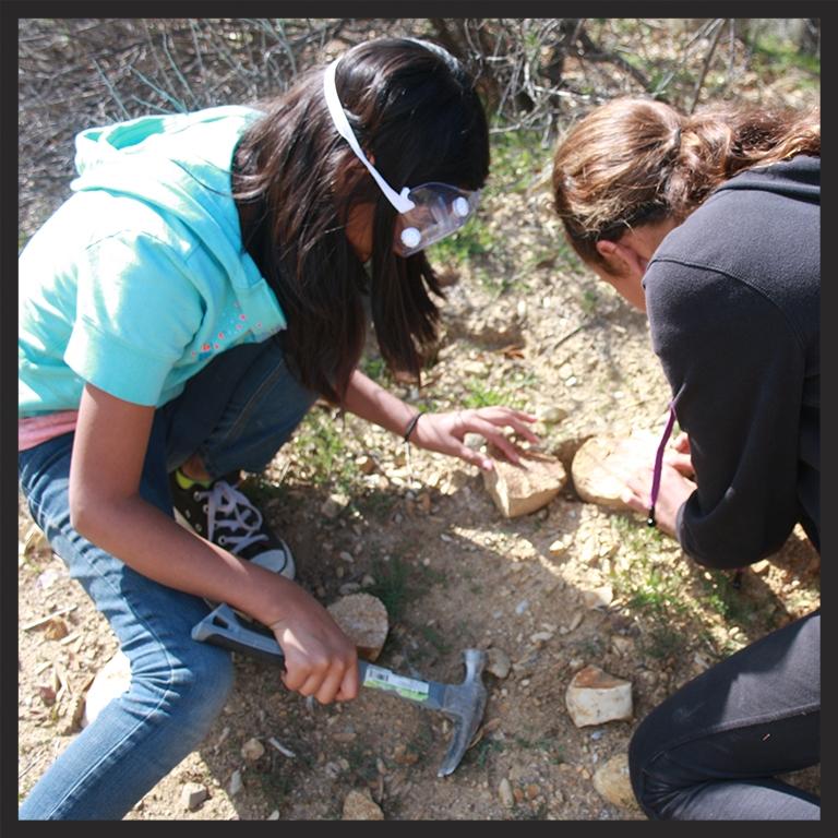Geology Dig