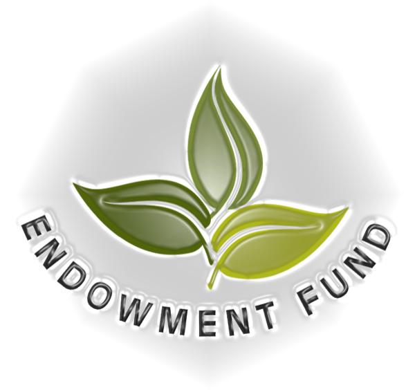 Endowmentp.png