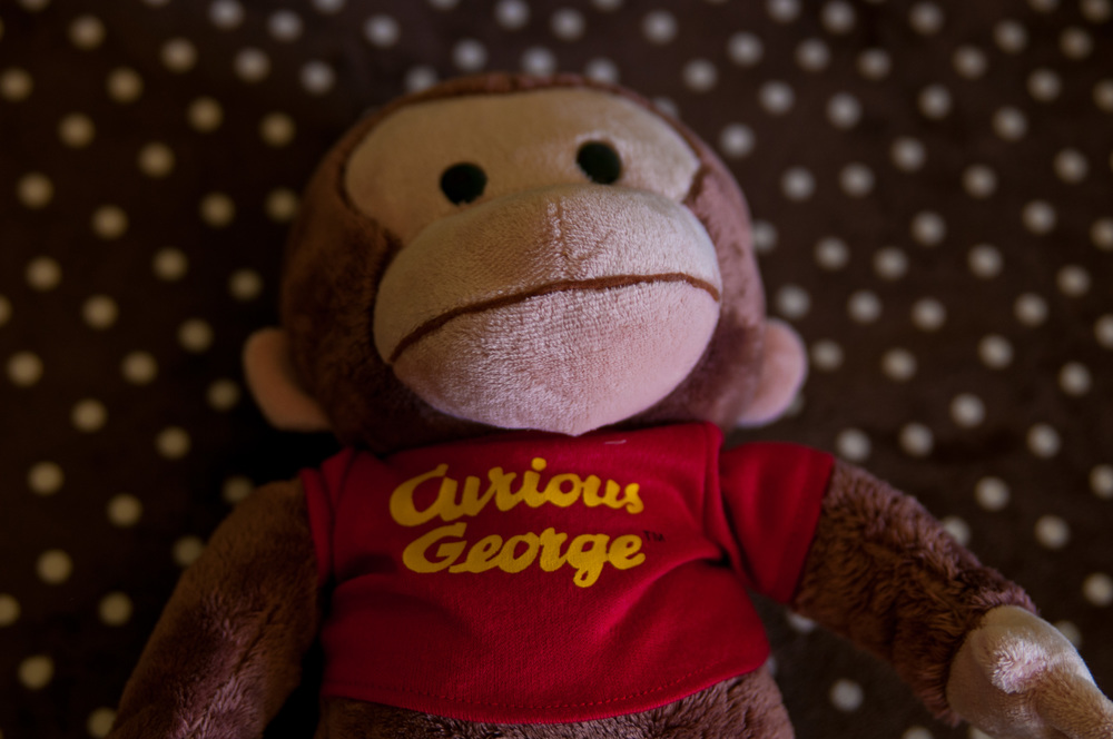 Curious George making an appearance at this newborn shoot www.MarcelAlainPhotography.com