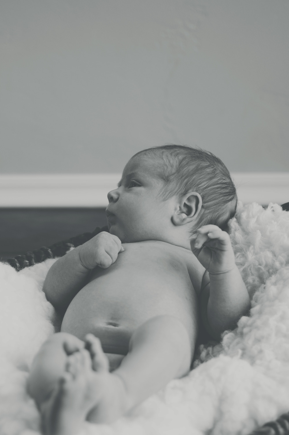 Newborn Photography - www.marcelalainphotography.com
