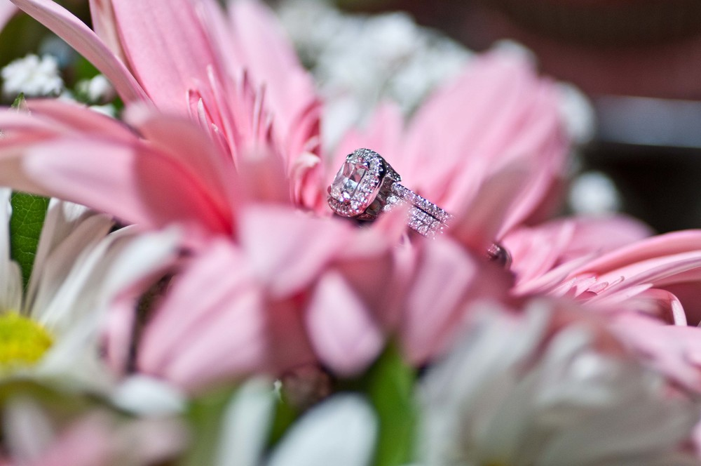 Wedding Photography-194.jpg