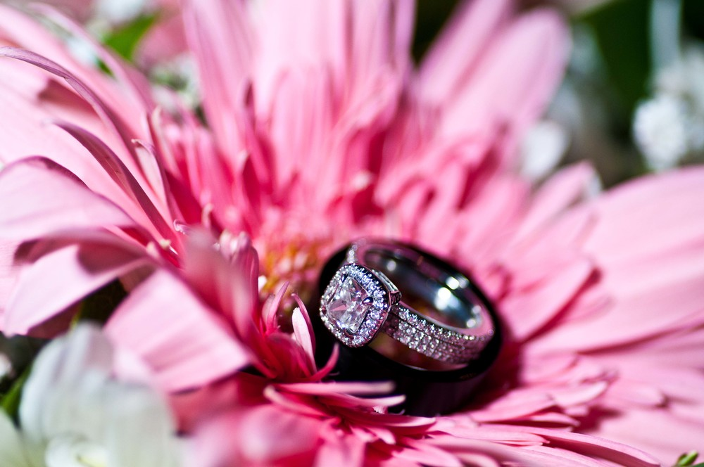 Wedding Photography-195.jpg