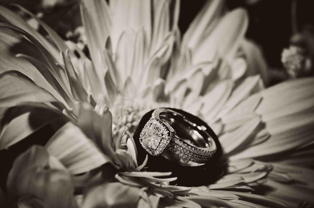 Wedding Photography-196.jpg