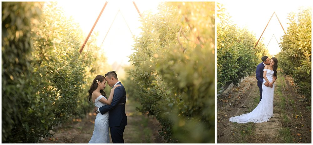 San Luis Obispo Wedding Pohotography