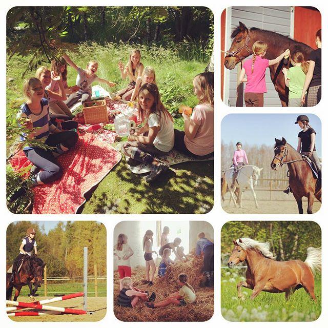 RIDLÄGER 2017 #ridläger2017 #hästsommar #stallkompisar