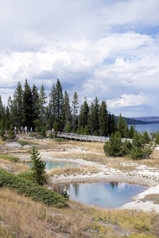 Yellowstone (16)