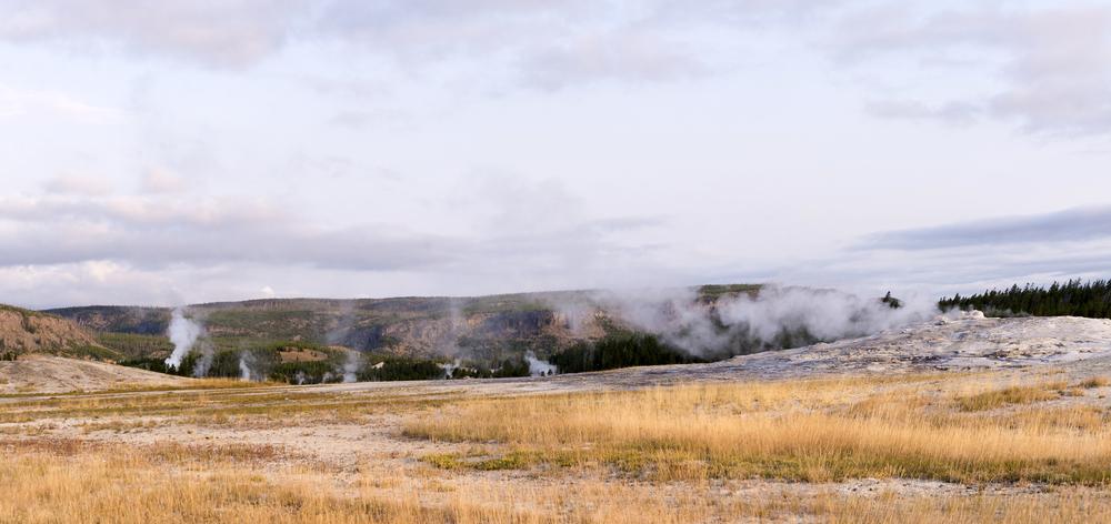 Yellowstone (22)