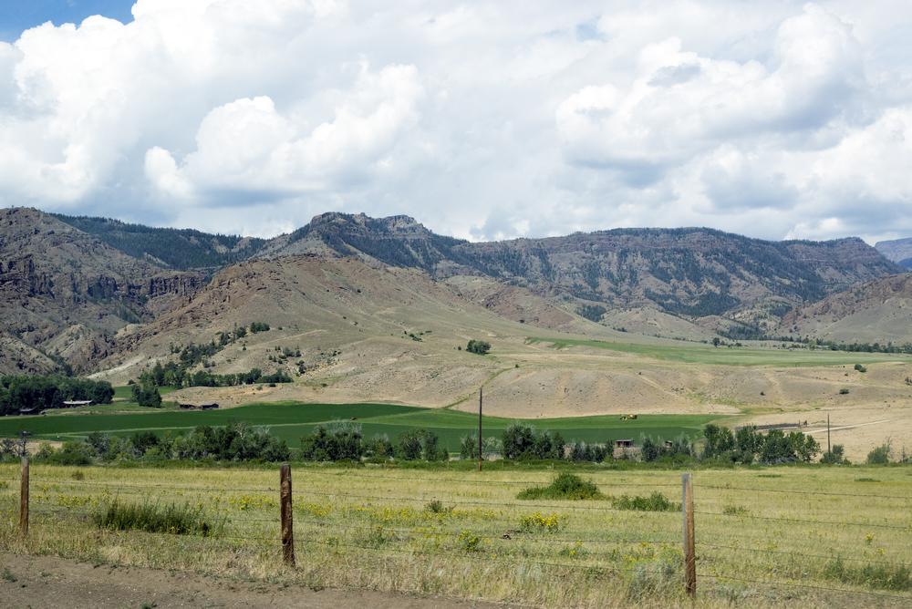 Yellowstone (5)