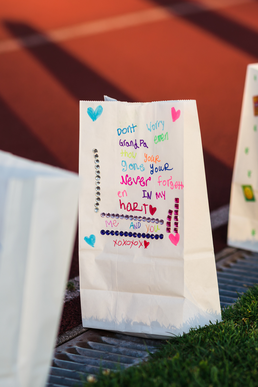 Lily_and_Lane_Relay_For_Life_Victoria_2015 (288).jpg