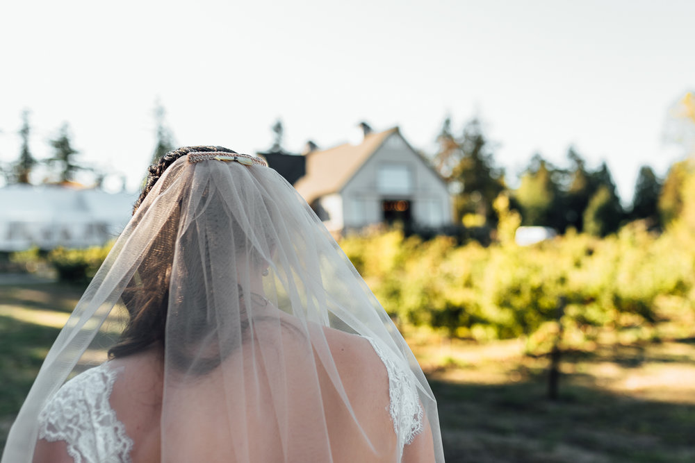 Nicola_Reiersen_Photography_Sea_Cider_Forest_Wedding (50).jpg