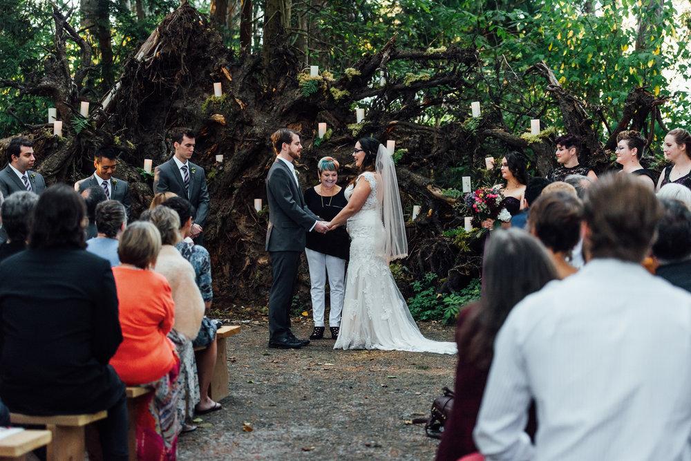 Nicola_Reiersen_Photography_Sea_Cider_Forest_Wedding (74).jpg