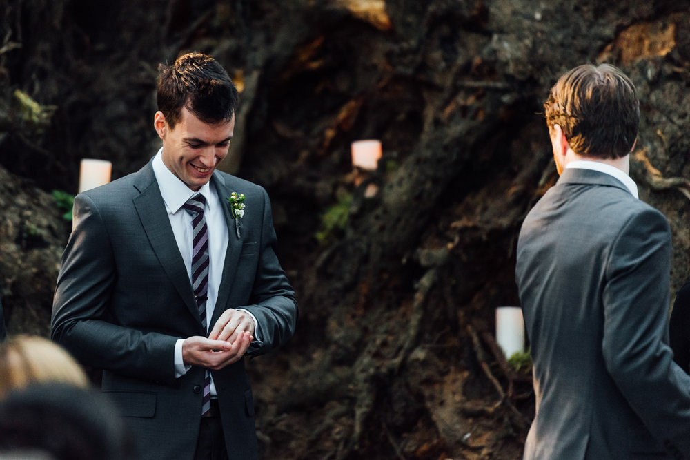 Nicola_Reiersen_Photography_Sea_Cider_Forest_Wedding (75).jpg