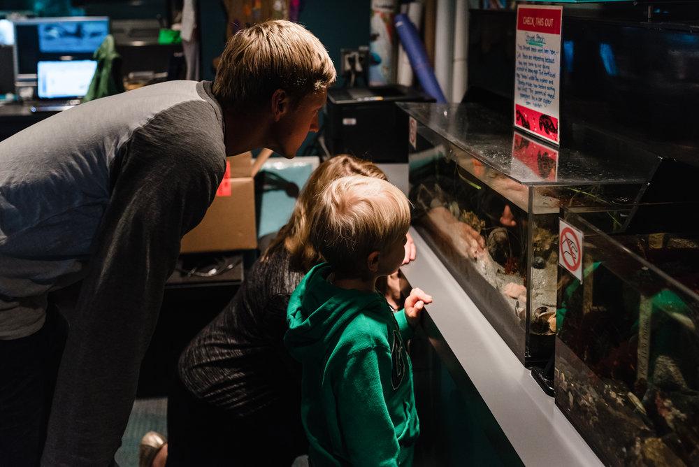 Nicola_Reiersen_Photography_Victoria_BC_Aquarium_Maternity_Session (19).jpg