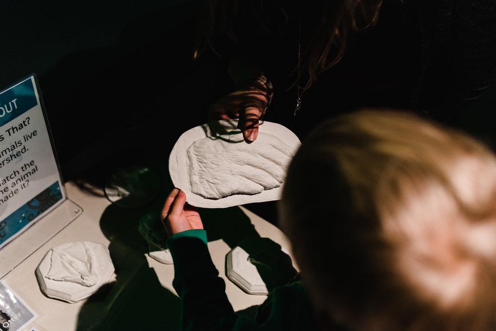 Nicola_Reiersen_Photography_Victoria_BC_Aquarium_Maternity_Session (44).jpg