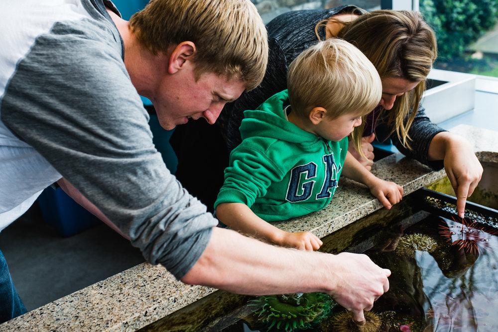 Nicola_Reiersen_Photography_Victoria_BC_Aquarium_Maternity_Session (135).jpg
