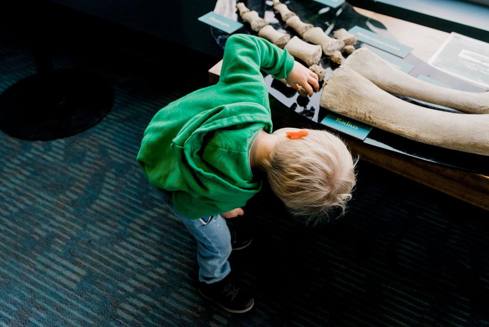Nicola_Reiersen_Photography_Victoria_BC_Aquarium_Maternity_Session (184).jpg