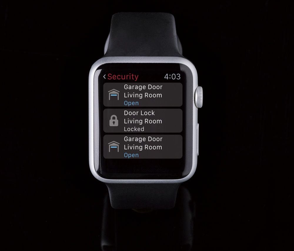 C4-iwatch_security.jpg