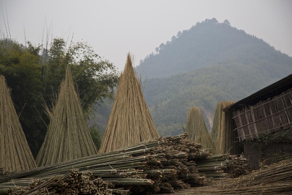 bamboo_teepees.jpg