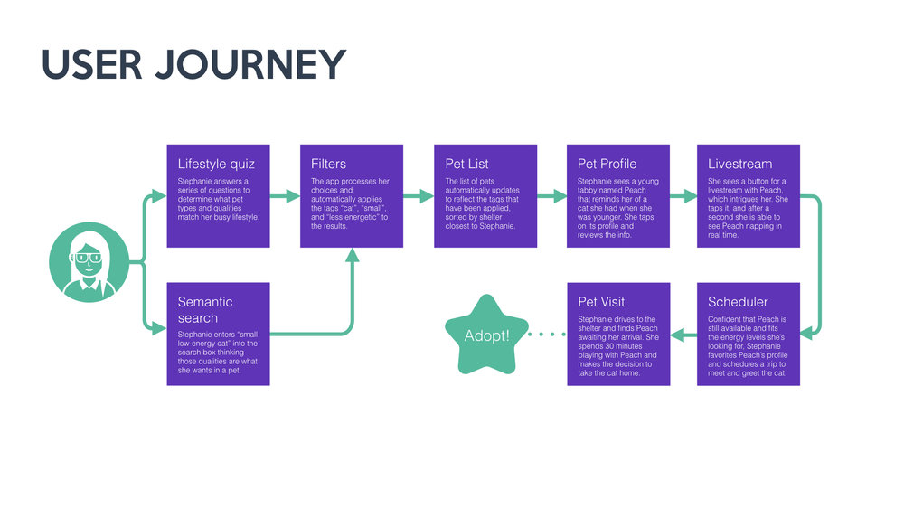 From here I thought through a user journey for my persona and what features she may need for a pet adoption app that addresses her pain points.