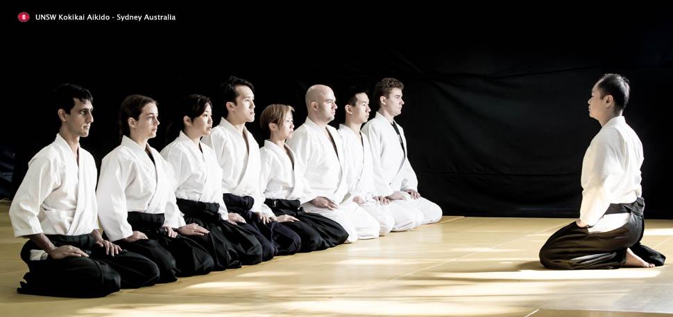 Banner_Aikido_2016_1