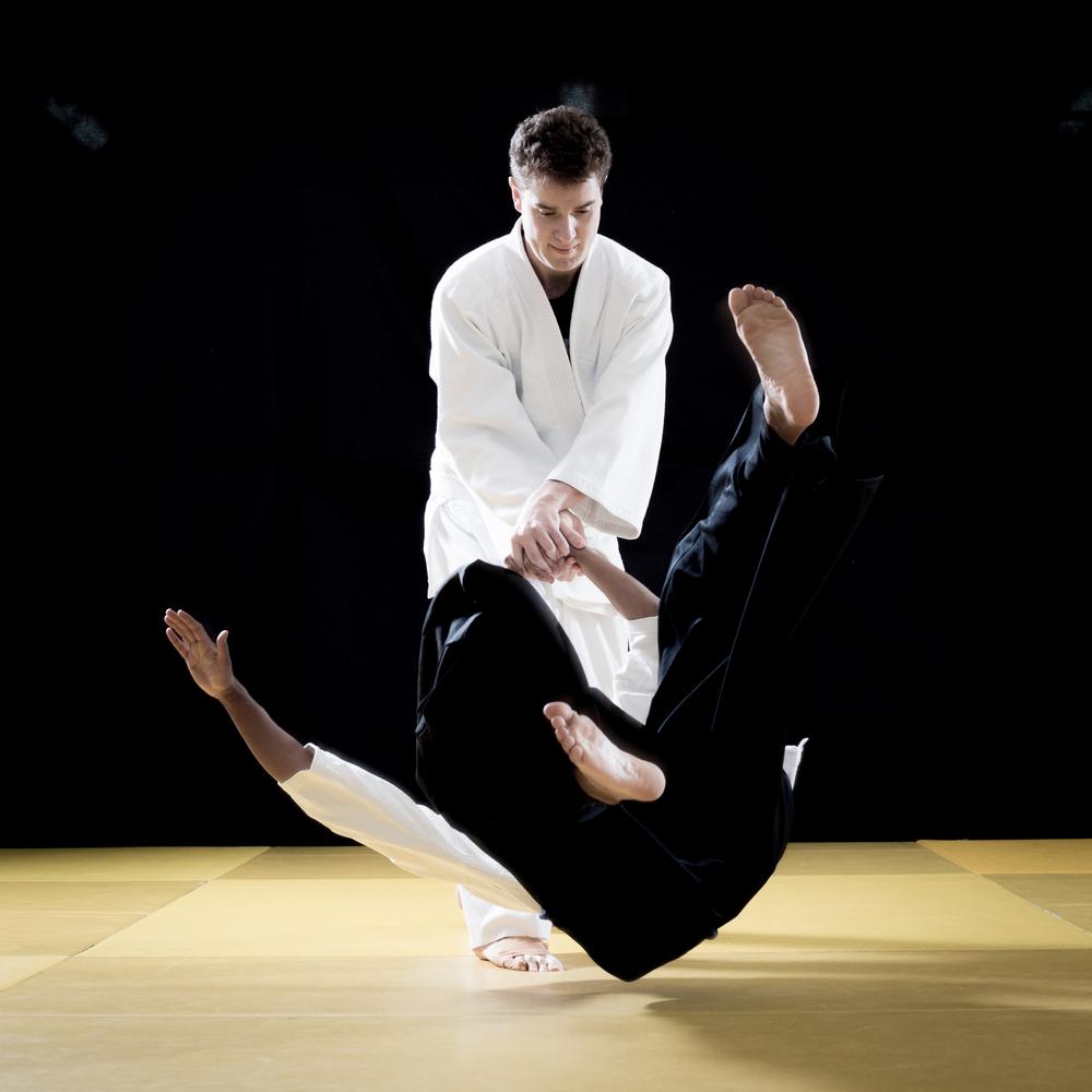aikido_2016-459.jpg