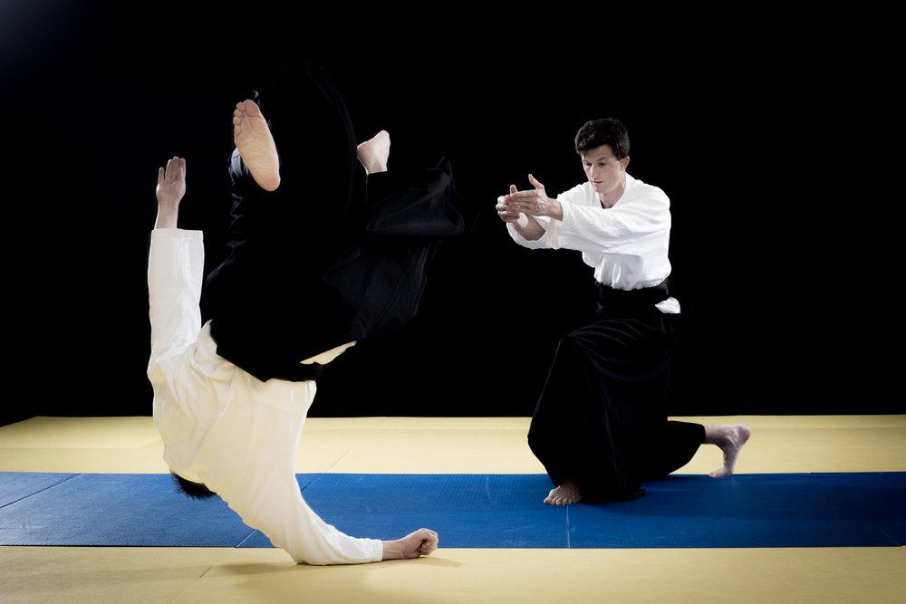aikido_kokikai_richard.jpg