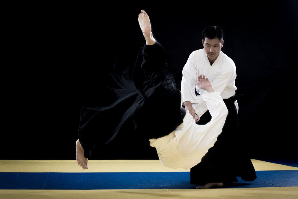 aikido_kokikai_allen_sensei.jpg