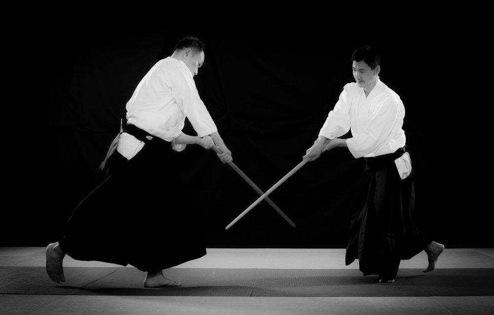 aikido_kokikai_bokken_alex_allen.jpg