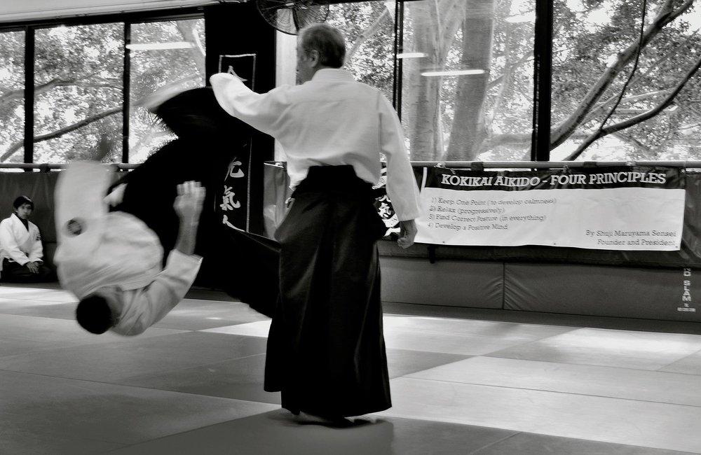 Ozeki Sensei throwing: 2012 UNSW Aikido Camp