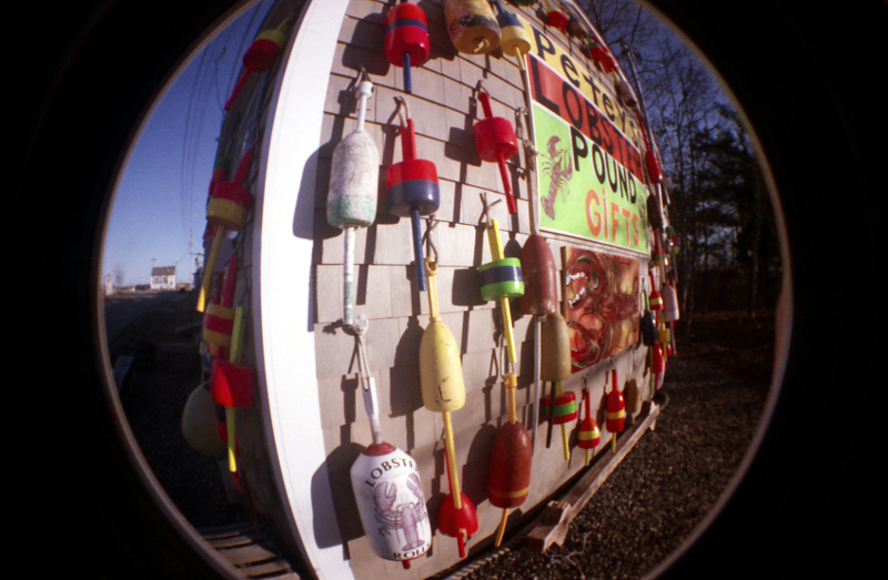 Petey's Lobster Pound  (Rye, NH). Photo taken with the Fisheye 2 camera.