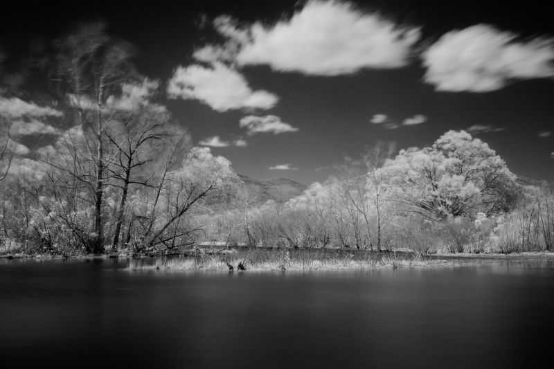 Monochrome IR image with the IR760 filter. Note how IR renders the blue sky and water almost black, while the green vegetation almost glows. It was quite windy when I shot this photo, which explains the blur in the tree tops.