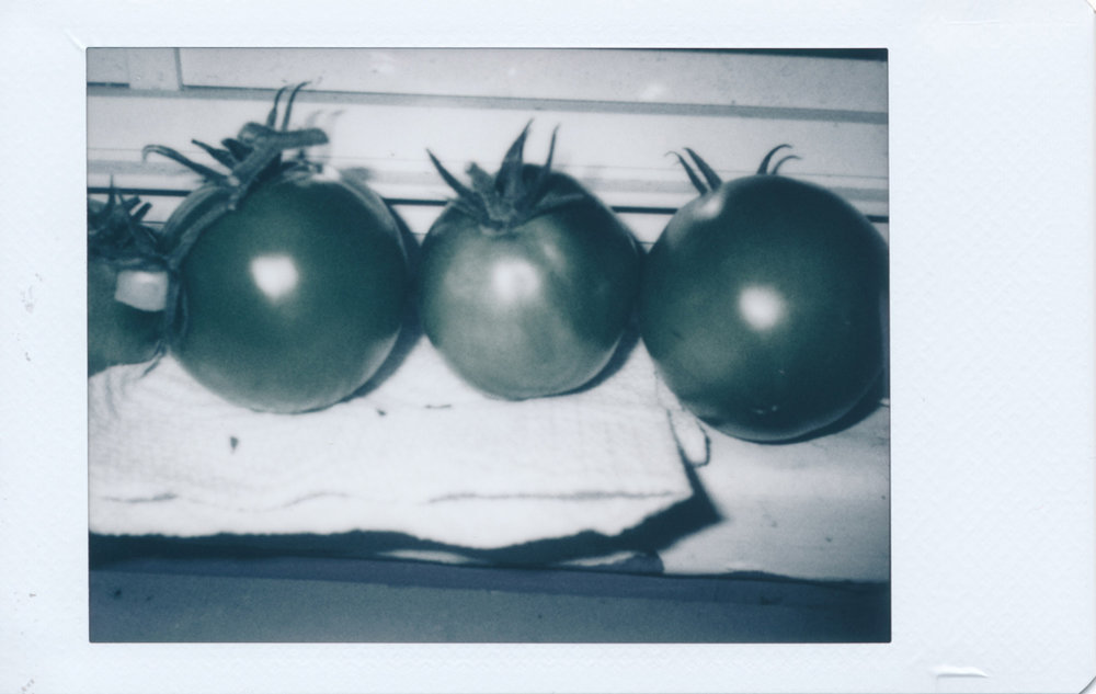 Tomatoes on our window sill. Shot in macro mode using the built-in flash.