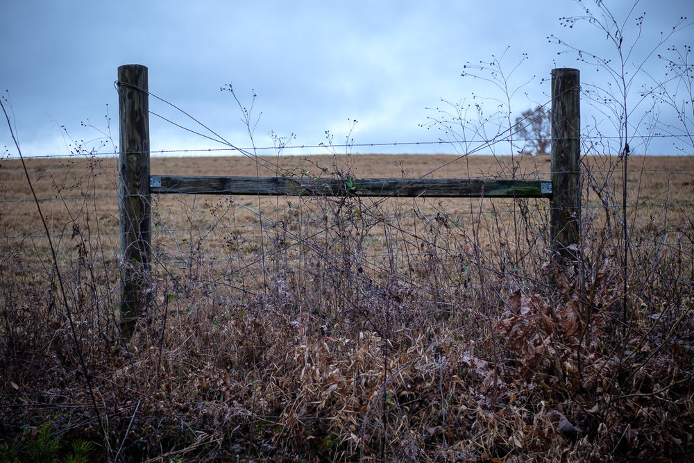Who can resist a wooden fence leading to a pasture?