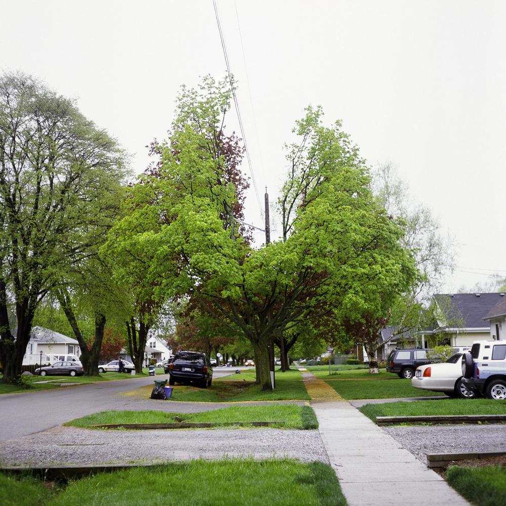 Forster St., 2011