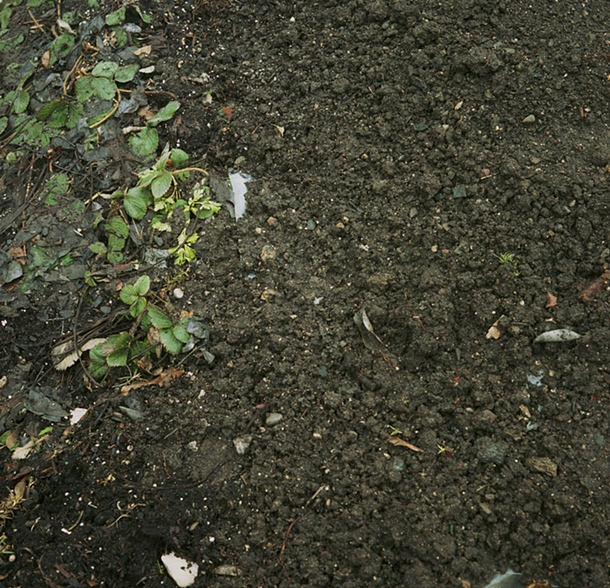 Dirt #7, 2007
