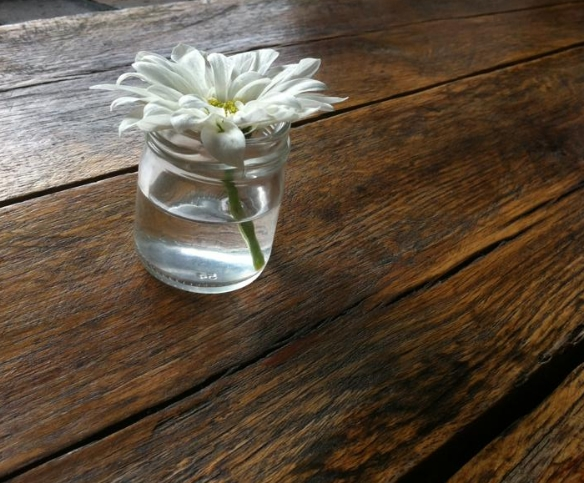 Warmth and simplicity  Sitting at a new cafe and absorbing the simplicity of a reclaimed wide planked wood table and a single flower in a mason jar. It's love.