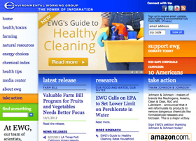 (BEFORE) EWG website