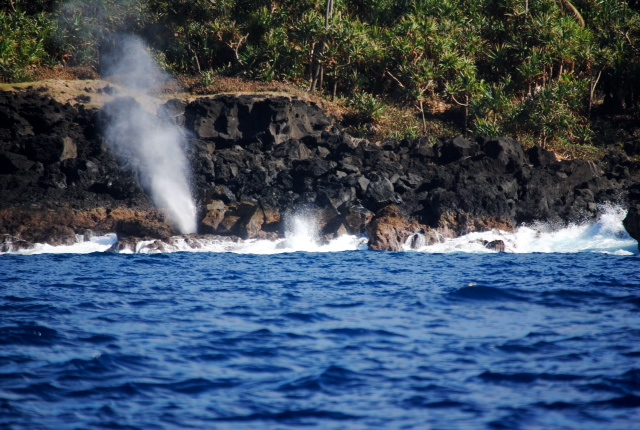 That she blows!  I think this is the Vuna blowhole.  Someone will correct me if I'm wrong.