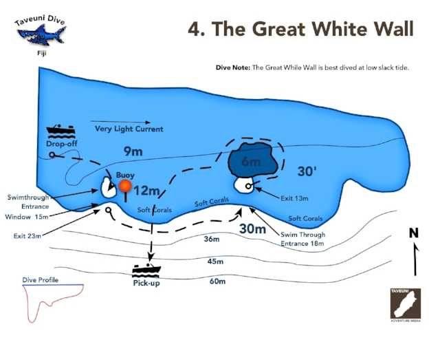 The Great White Wall Dive Map | Return to Dive Sites